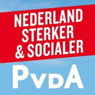 banner pagina pvda